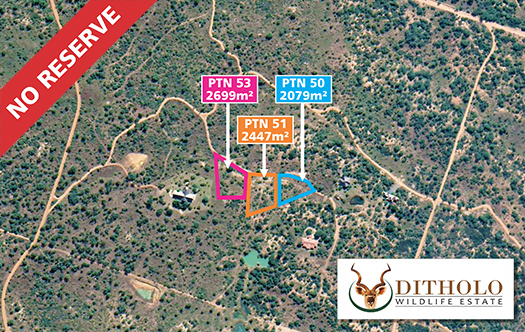 Image of Ditholo Wildlife Estate - 3 Stands