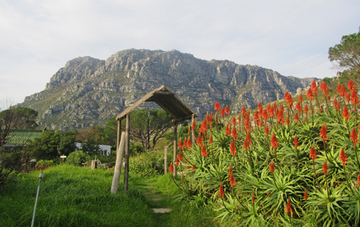 Image of Bainskloof Pass Hotel Site